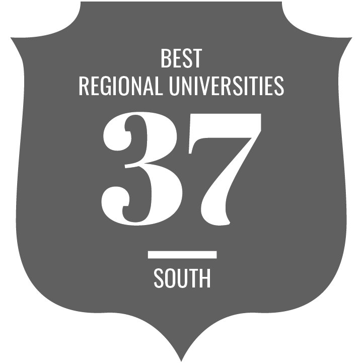 Best Regional Universities South ranking icon